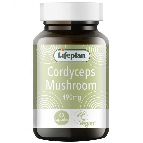 Cordyceps Mushroom x 60