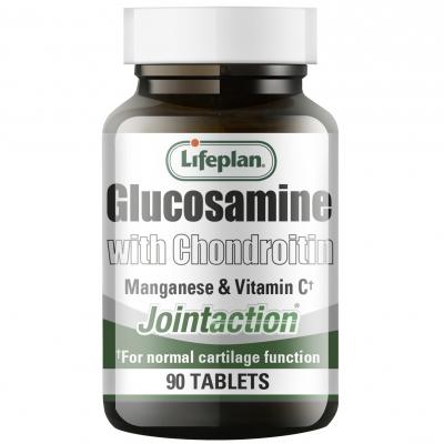 Glucosamine with Chondroitin 90's